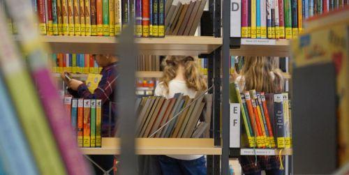 Bibliotheks-Detektive